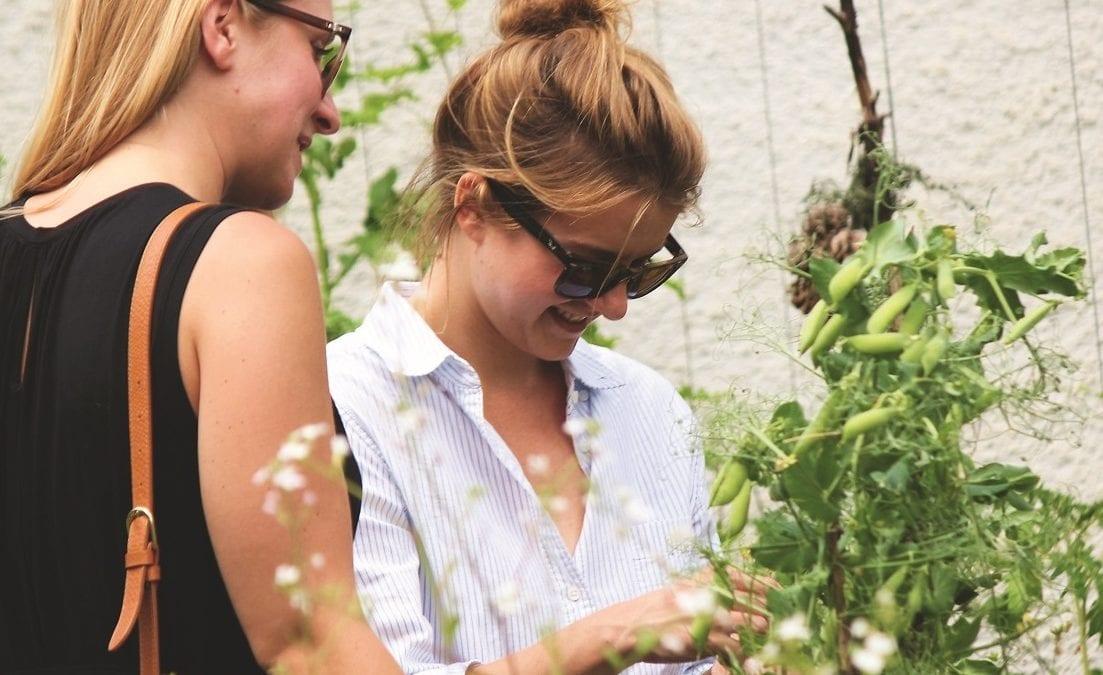 Urban Gardening- Das grüne Leben in der Stadt   Muenchen mit Kind