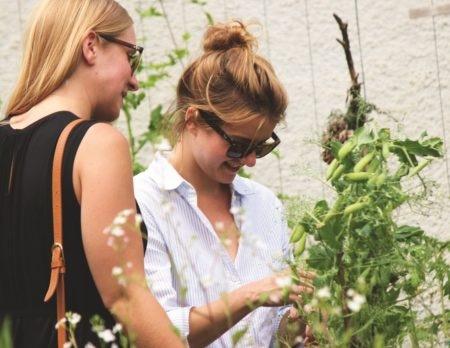 Urban Gardening- Das grüne Leben in der Stadt | Muenchen mit Kind