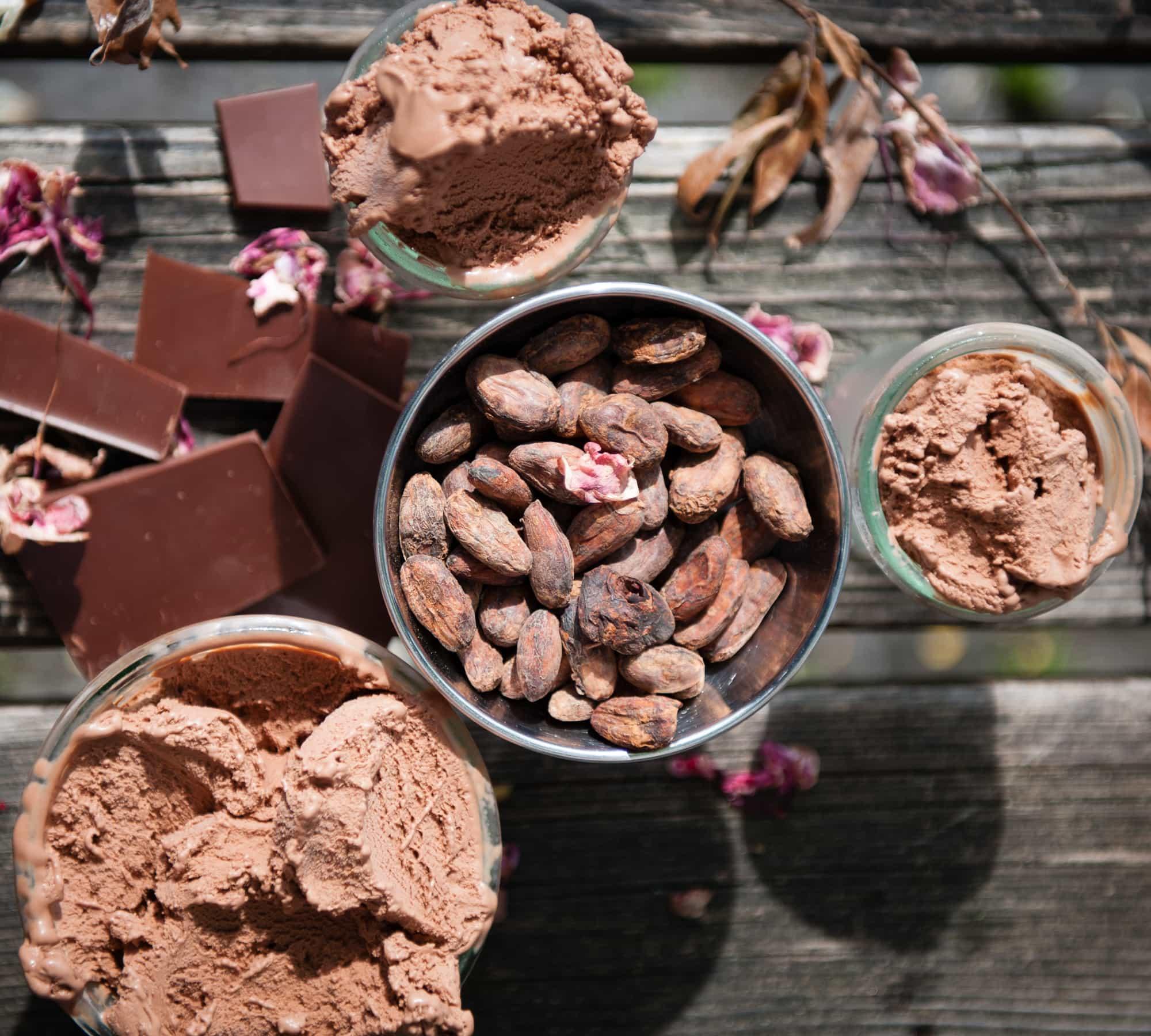 del fiore Eis Schokolade // HIMBEER