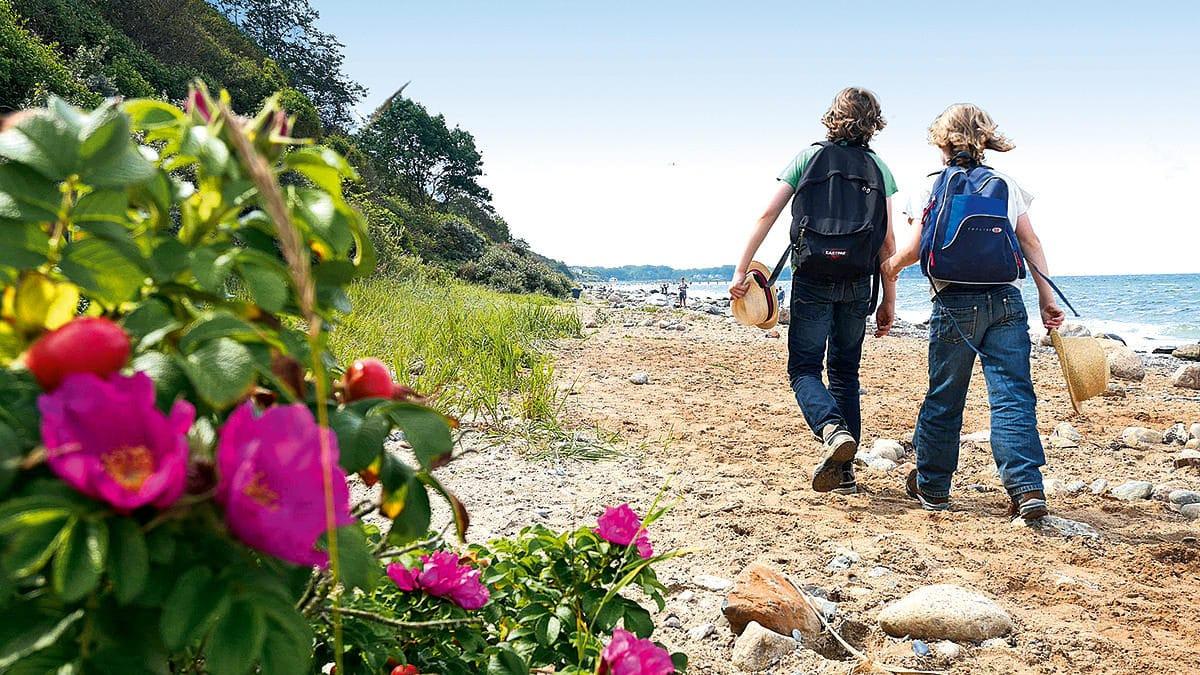 Abenteuer An Der Ostsee Zwischen Wismar Rügen Und Usedom