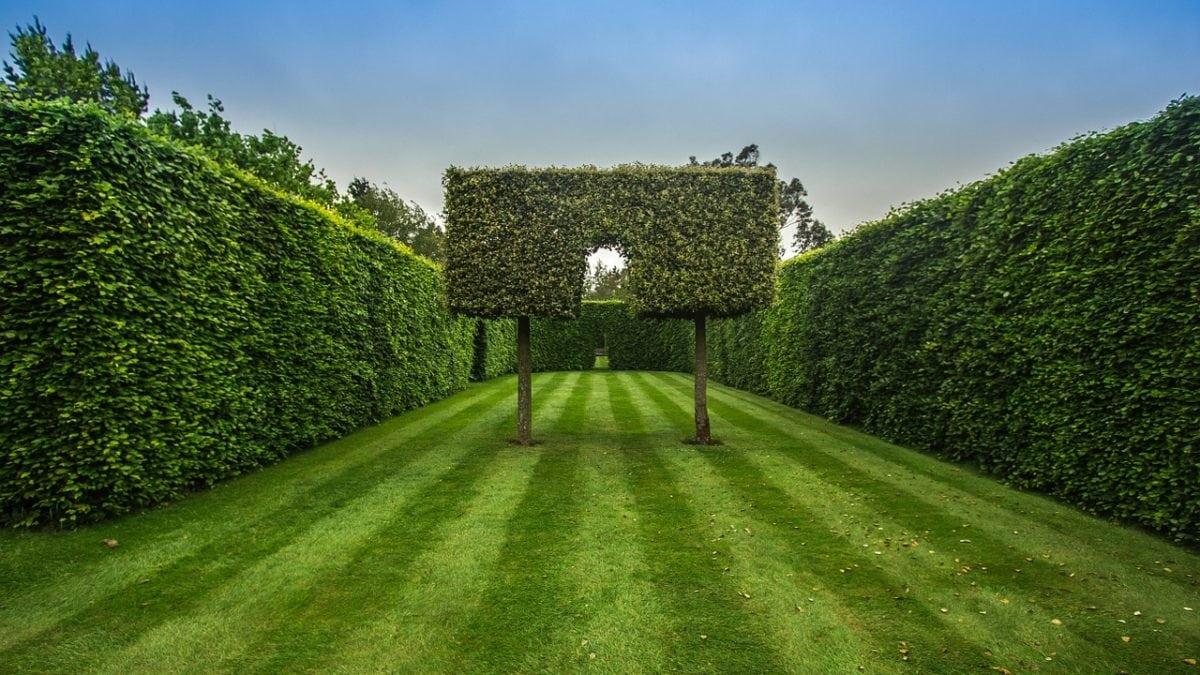 Labyrinthe, Labyrinth, pixabay, verirren, Hecke // München mit Kind