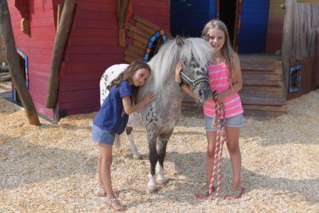 Ponyfarm_Ponys und Esel zum Verlieben sueß im EQUILALAND // München mit Kind