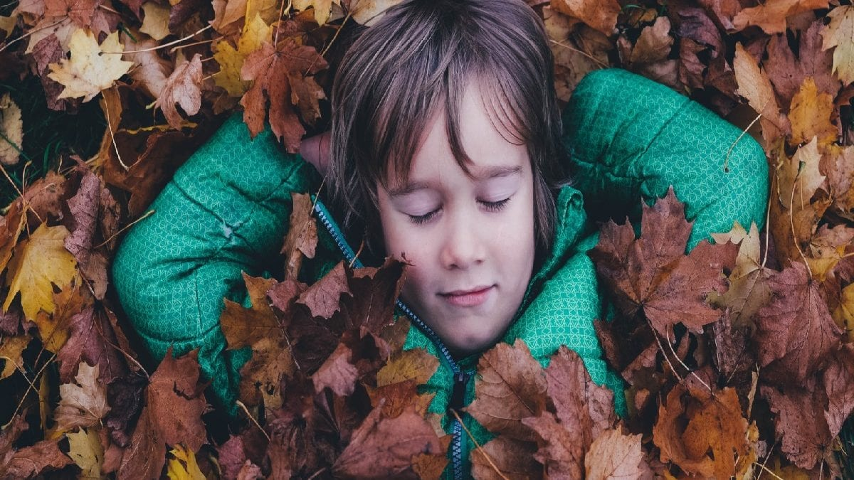 Herbstferienkurse Junge Blaetter Bunt // Muenchen mit Kind