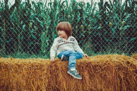 Junge Stroh Herbst Wochenendtipps // Muenchen mit Kind