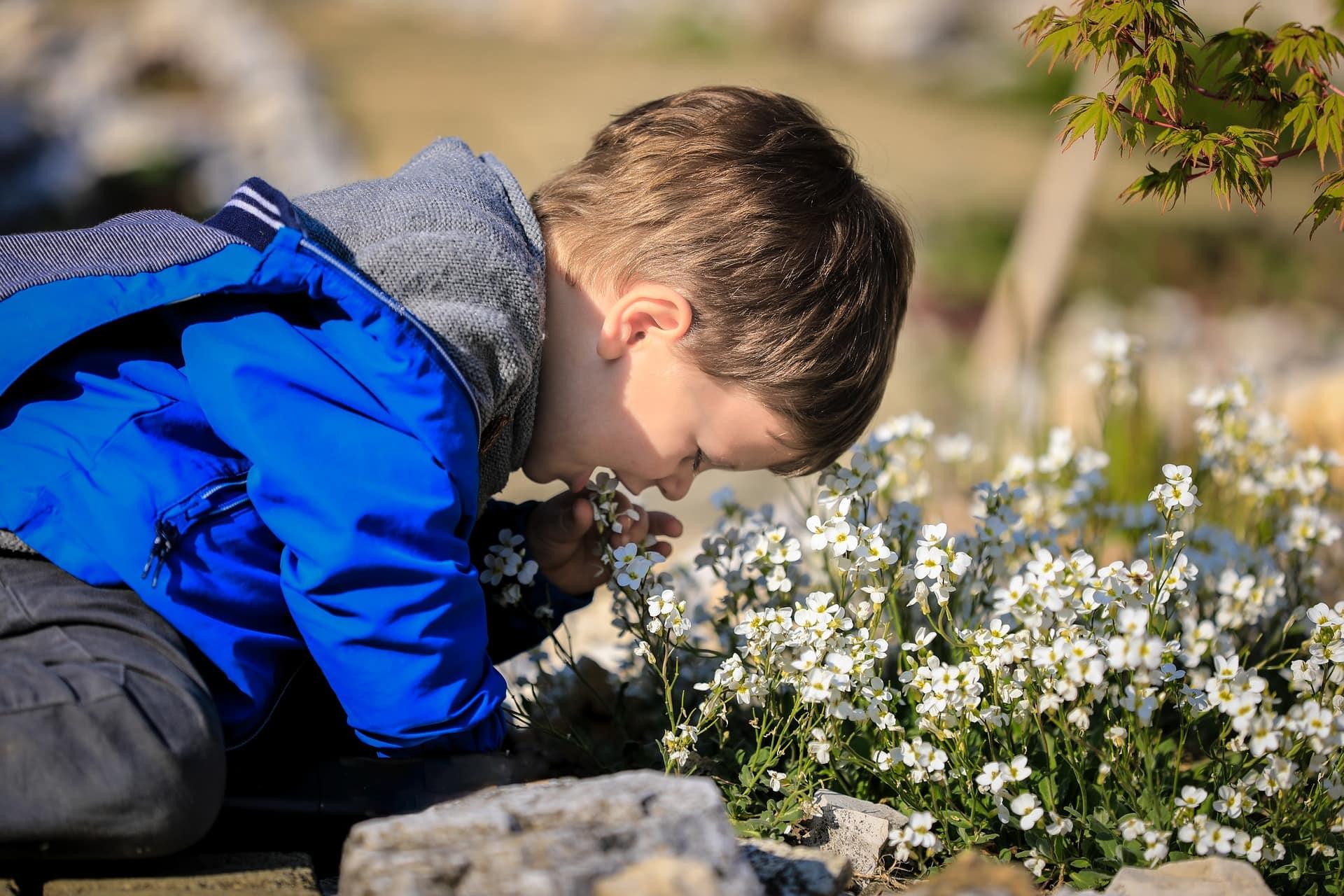 Macht euch schmutzig! Junge Blumen Naturworkshops // HIMBEER