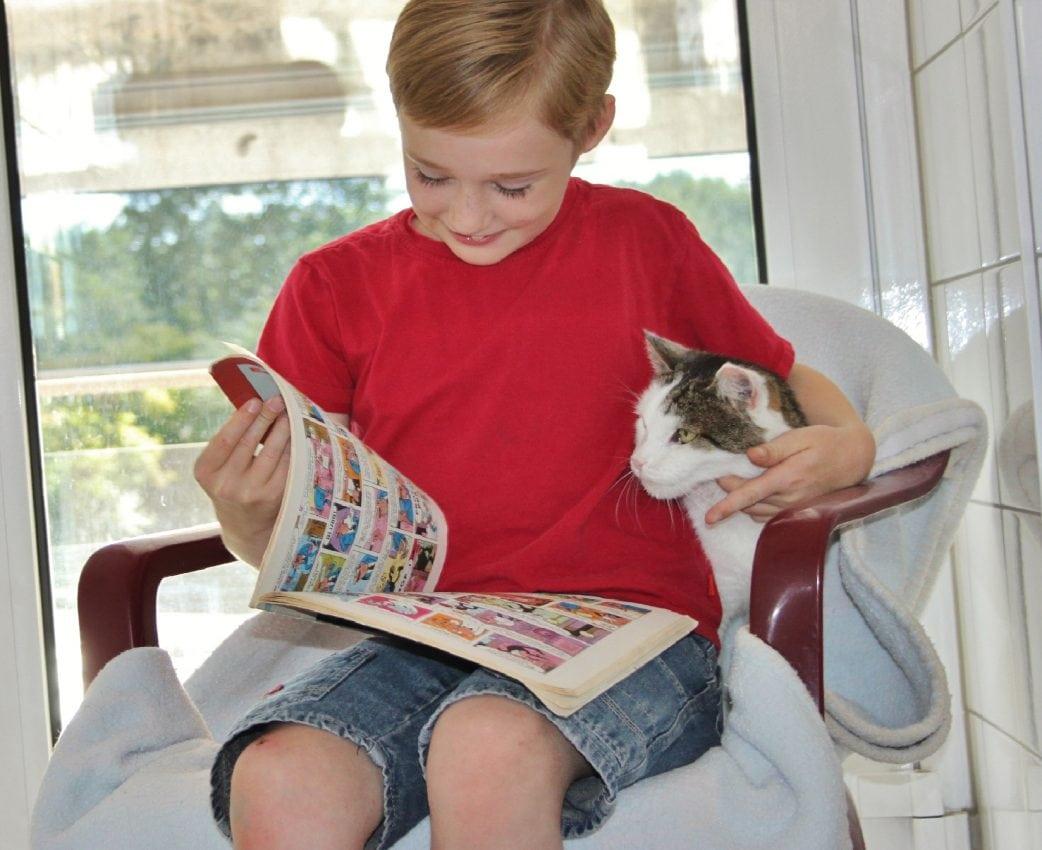 Kinder lesen Katzen vor Tierheim Muenchen // HIMBEER