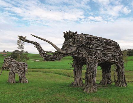 Mammut in Rimsting // HIMBEER