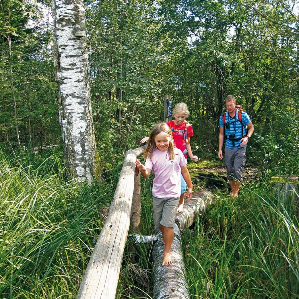 Wanderführer für Familien vom Bergverlag Rother: Erlebniswandern mit Kindern im Münchner Umland // HIMBEER