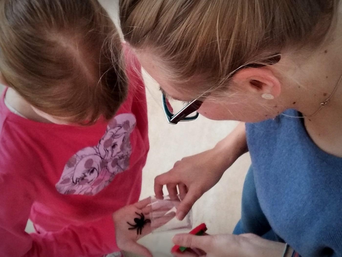 Spinnenaktionstag Spinne Kind // HIMBEER