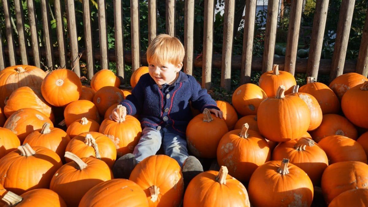 Herbsttag in München mit Kindern urban kids // HIMBEER