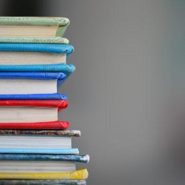 Bücherschränke Bücher Tauschen Nachhaltigkeit // HIMBEER