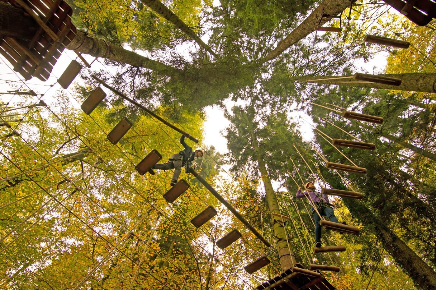Ausflugstipp mit Kindern: Münchner Wald, Kletterwald Vaterstetten // HIMBEER