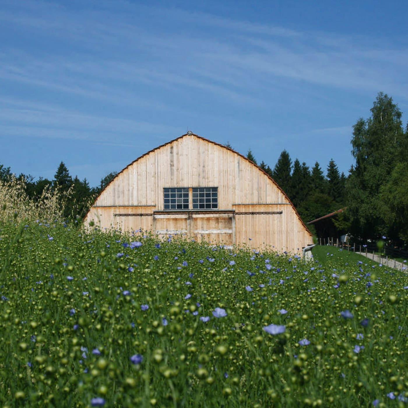 Ausflugstipp für Münchner Familien mit Kindern: Freilichtmuseum Glentleiten // HIMBEER