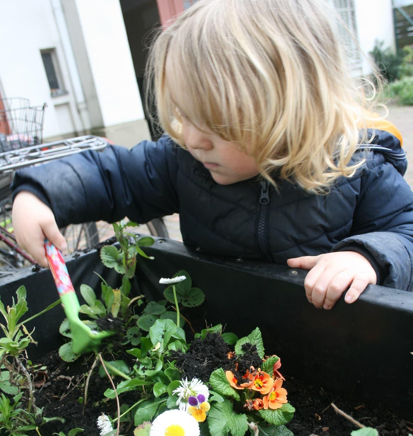 Gärtnern mit Kleinkindern im Hof // HIMBEER