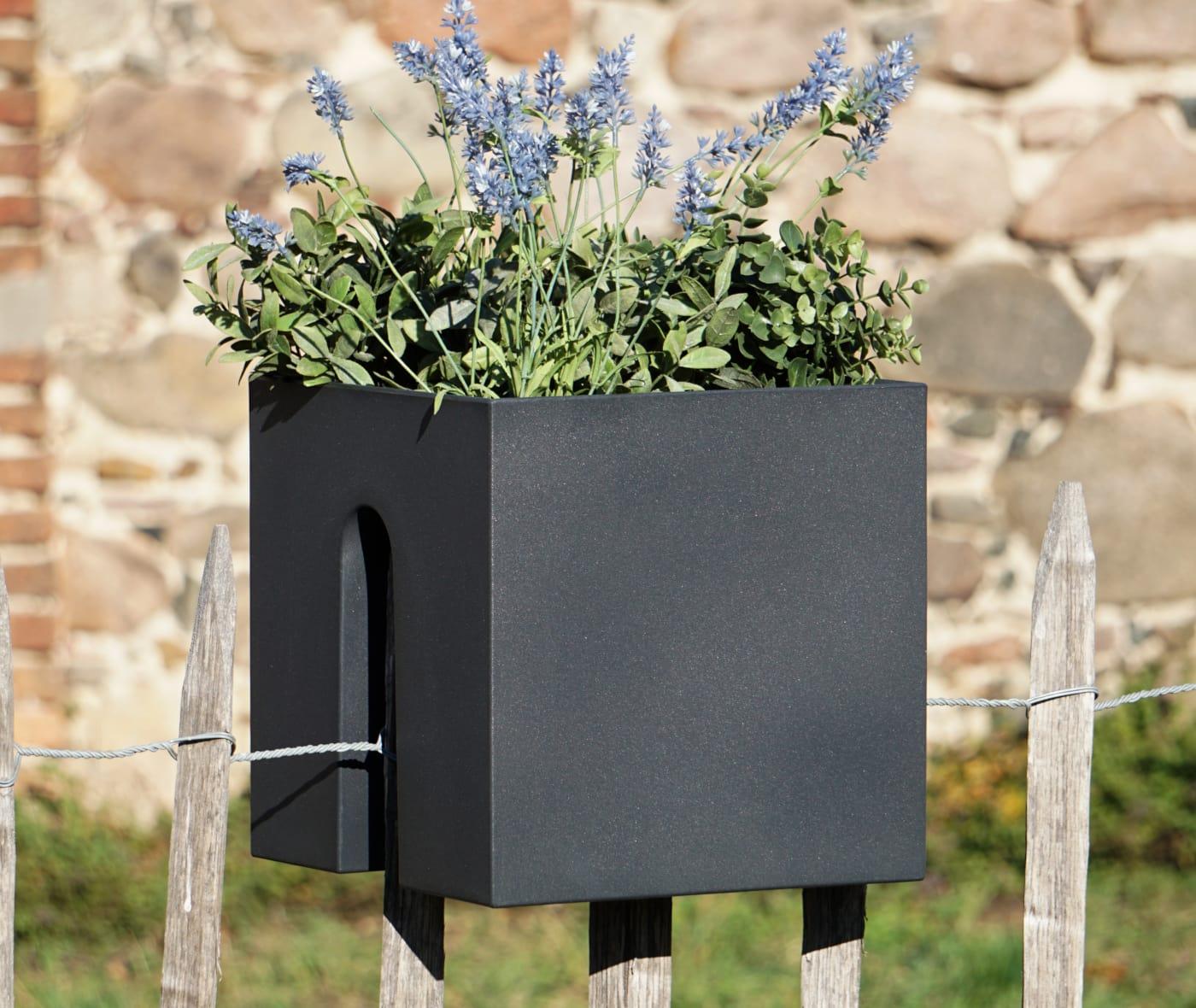Rephorm Haus Steckling Cube
