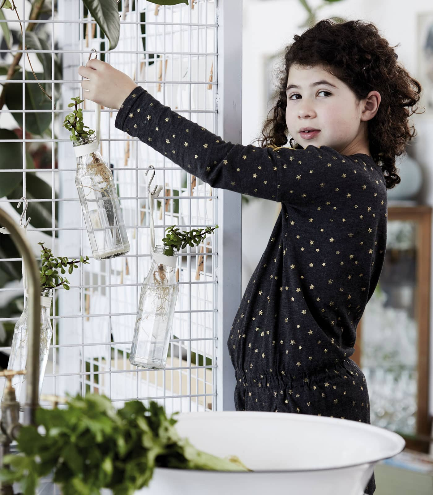 Pflanzen vermehren mit Kindern // HIMBEER
