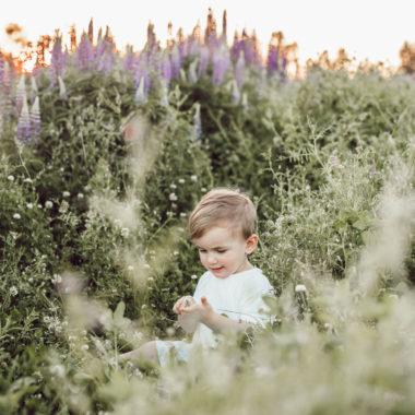 Mini-Tipps im Juli 2020: München mit Baby und Kleinkind im Sommer // HIMBEER