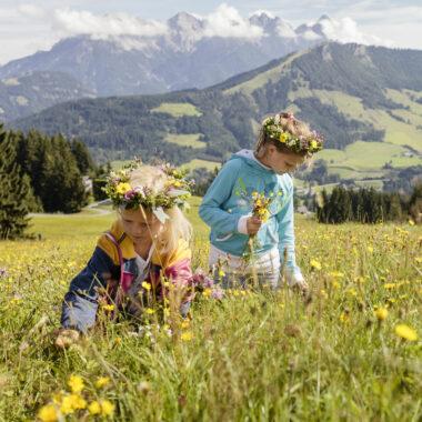 SommerAlmFerien für Kinder // HIMBEER