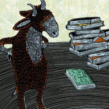 Auagezeichnete Kinder- und Jugendbücher – DJLP-Preisträger 2020 // HIMBEER