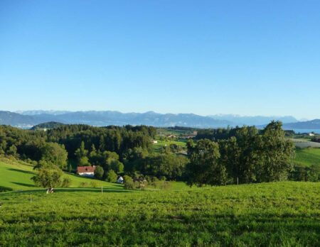 Urlaub auf dem Land mit Kindern: Landhotel Martinsmühle am Bodensee – Umgebung // HIMBEER