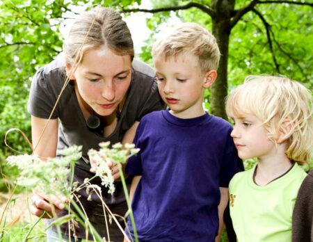 NAJU-Tipps: Balkon mit Kindern bepflanzen und kleine Natur-Experimente machen // HIMBEER