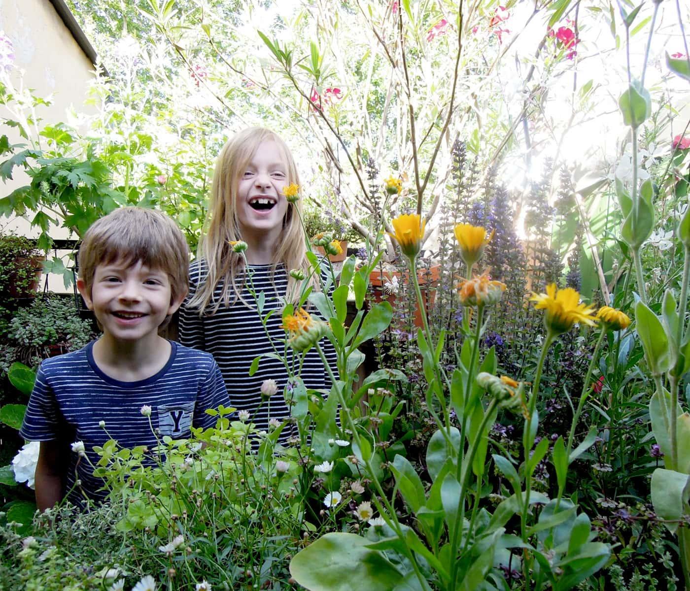 Balkon und Garten bienenfreundllich gestalten // HIMBEER