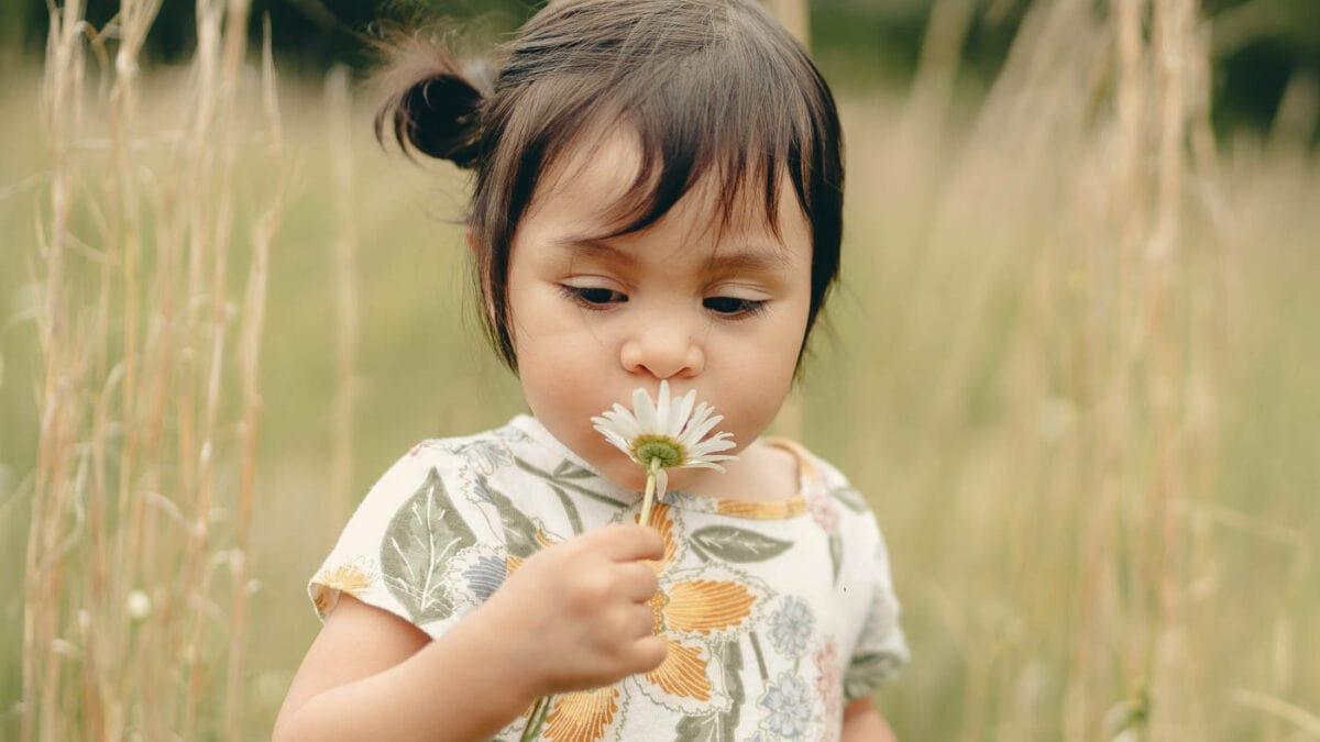 Mini-Tipps Juli 2021: Veranstaltungen für Kleinkinder // HIMBEER