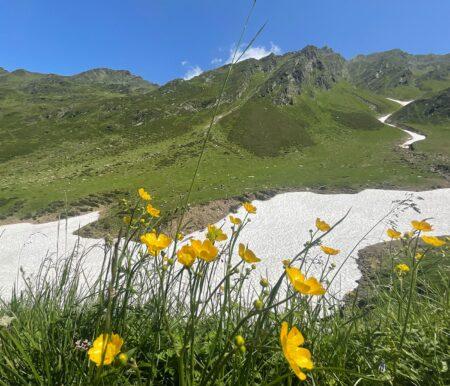 Bergurlaub in Südtirol: Family Resort & Spa Hotel Schneeberg // HIMBEER