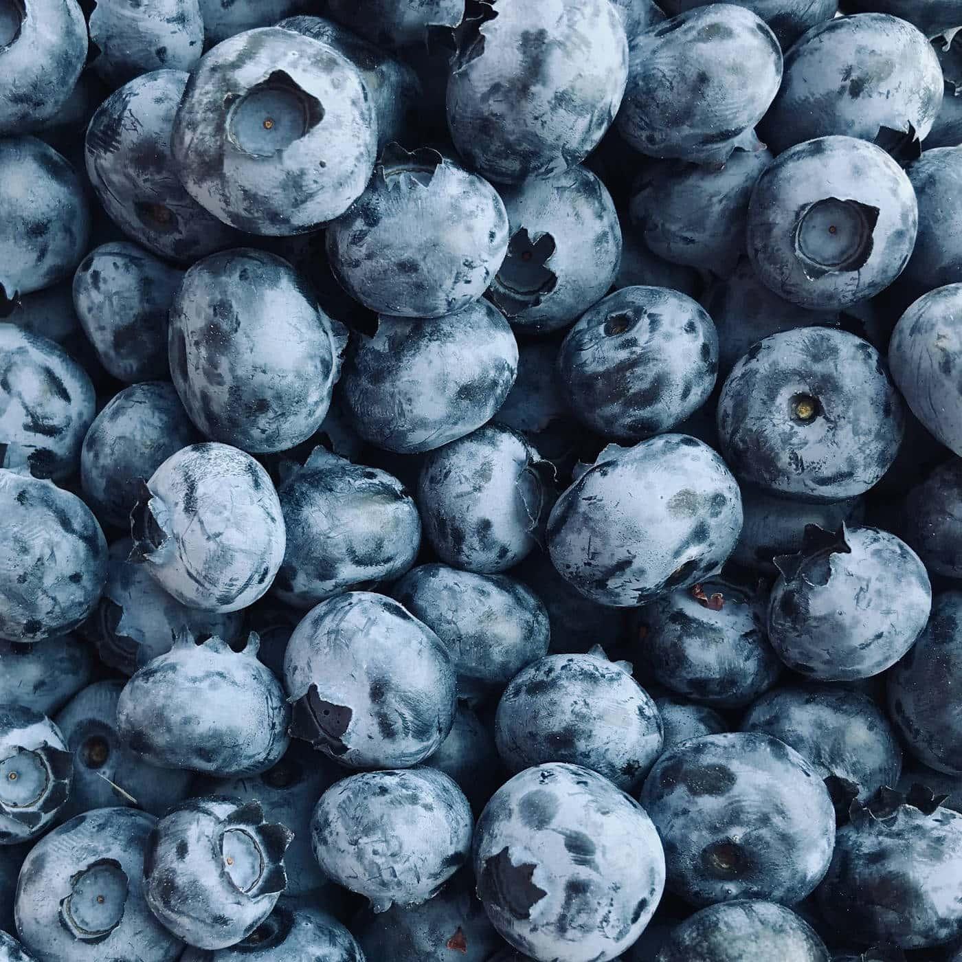 Heidelbeeren – Blaubeeren für Pancakes // HIMBEER
