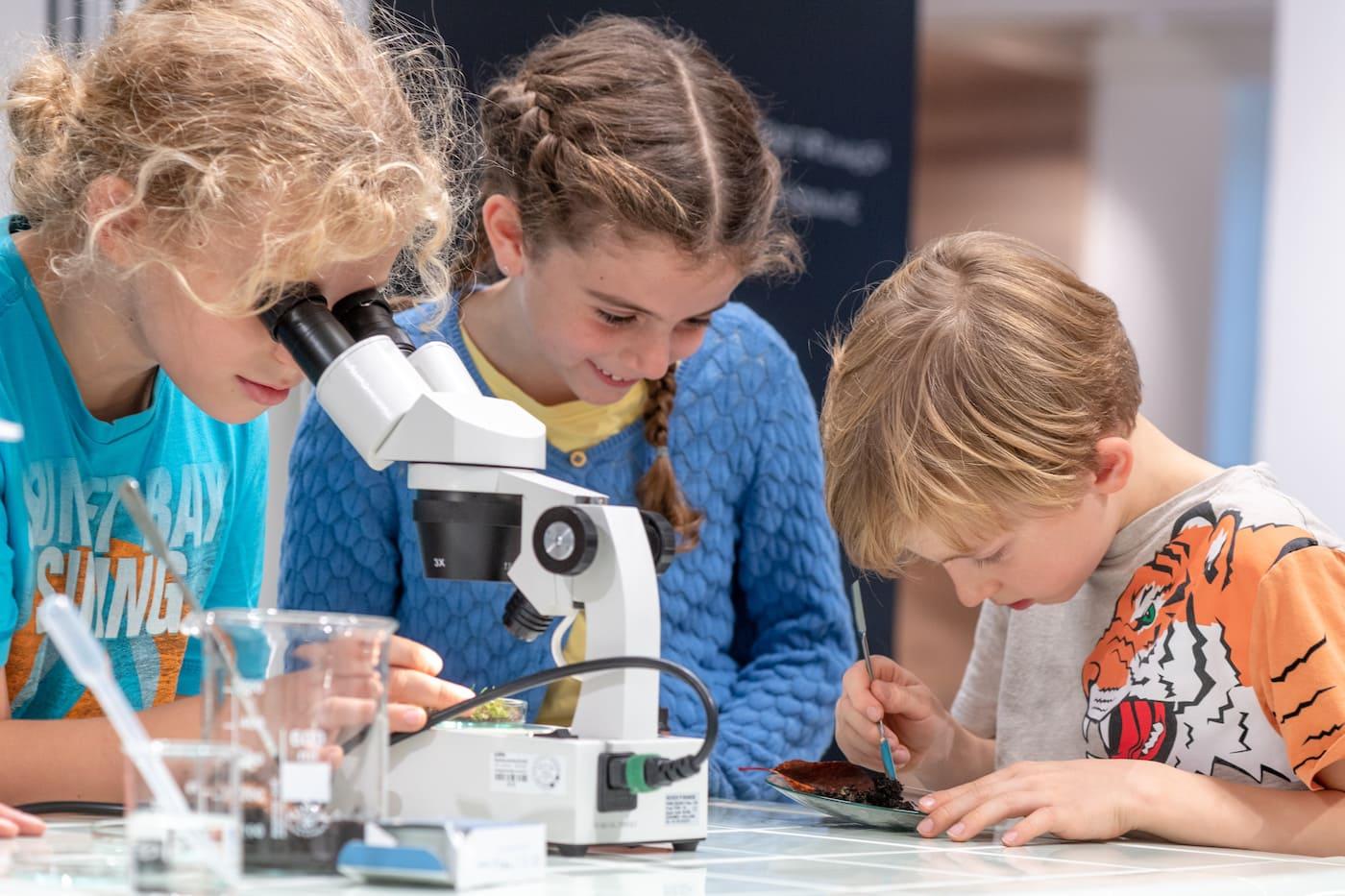 Sommerferien-Programm für Kinder im BIOTOPIA Lab // HIMBEER