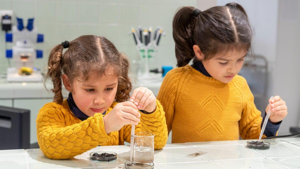 Wissenschaftliches Mitmachprogramm für Kinder in München // HIMBEER